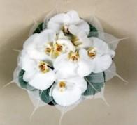 Букет невесты из орхидей №13