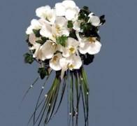 Букет невесты из орхидей №18