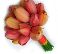 Букет невесты из тюльпанов №6