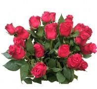 CHERRY O Роза красная