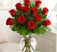 RAN ELEGANCE RED Роза красная